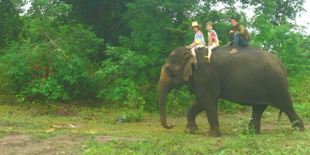 riding elephants