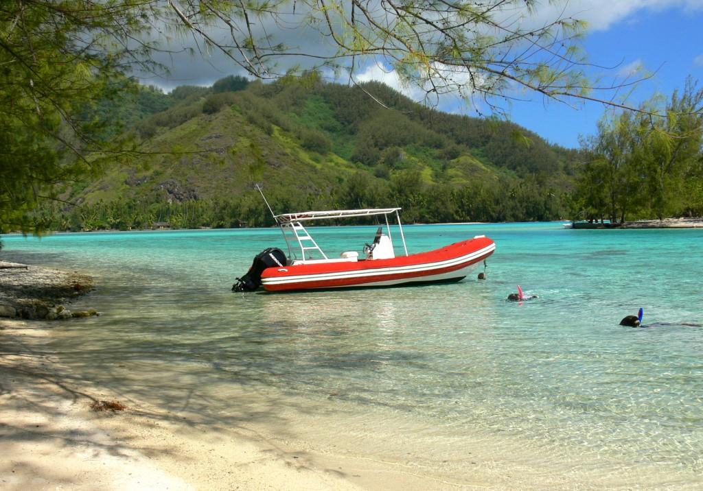 snorkeling moorea 2